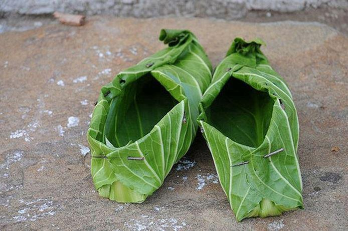 acido urico afecta articulaciones acido urico elevado tratamento natural plantas medicinales para curar acido urico