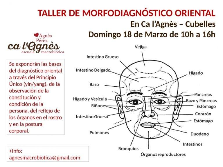 cartel_diagnostico